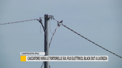 Cacciatore mira alle tortorelle sul filo elettrico: blackout a Lucrezia – VIDEO